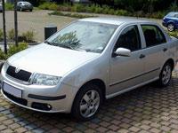 brugte Skoda Fabia biler